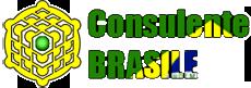 Consulente Brasile